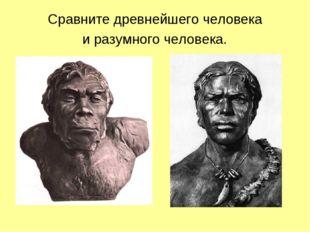 Сравните древнейшего человека и разумного человека.