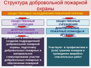Структура добровольной пожарной охраны ОБЩЕСТВЕННЫЕ ОБЪЕДИНЕНИЯ ПОЖАРНОЙ ОХРА