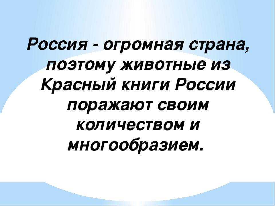 Россия - огромная страна, поэтому животные из Красный книги России поражают...