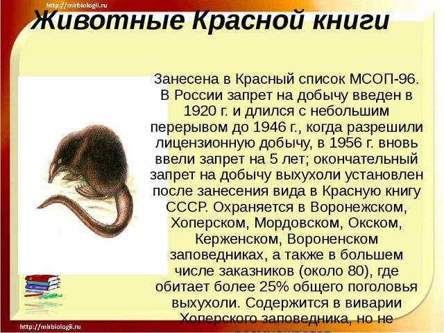 Животные Красной книги Занесена в Красный список МСОП-96. В России запрет на...