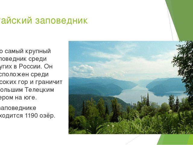 Алтайский заповедник Это самый крупный заповедник среди других в России. Он р...