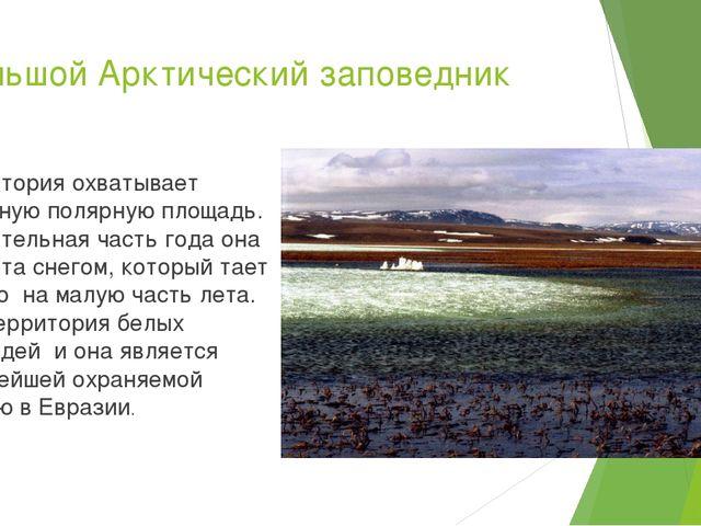 Большой Арктический заповедник Территория охватывает огромную полярную площад...