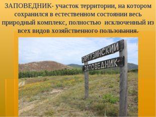 ЗАПОВЕДНИК- участок территории, на котором сохранился в естественном состояни