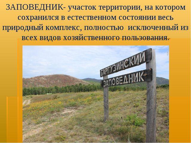 ЗАПОВЕДНИК- участок территории, на котором сохранился в естественном состояни...
