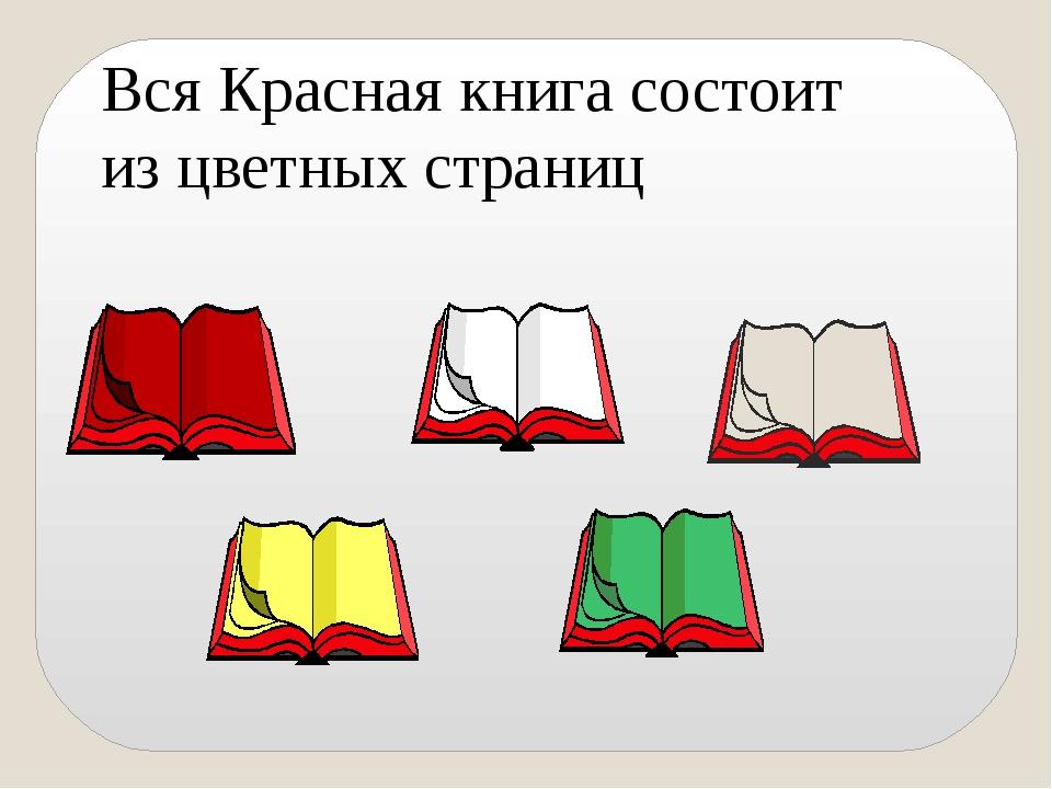 Вся Красная книга состоит из цветных страниц