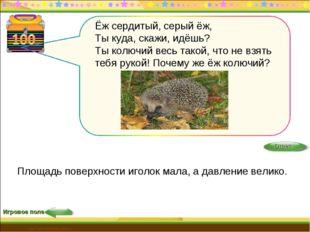 Игровое поле http://edu-teacherzv.ucoz.ru Площадь поверхности иголок мала, а