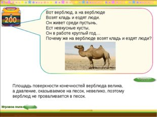 http://edu-teacherzv.ucoz.ru Игровое поле Площадь поверхности конечностей вер