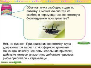 Игровое поле http://edu-teacherzv.ucoz.ru Нет, не сможет. При движении по пот