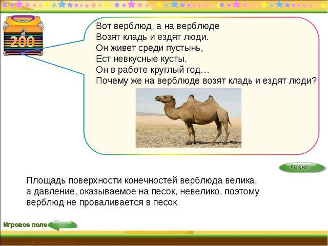 http://edu-teacherzv.ucoz.ru Игровое поле Площадь поверхности конечностей вер...