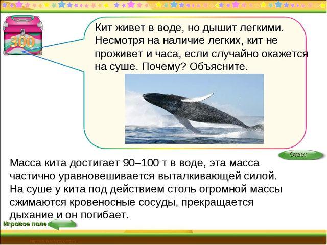 Игровое поле http://edu-teacherzv.ucoz.ru Масса кита достигает 90–100 т в вод...