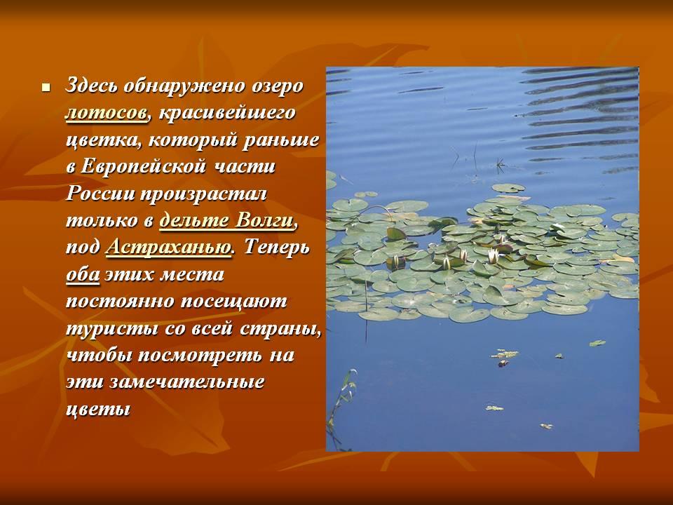 hello_html_b6057e7.jpg