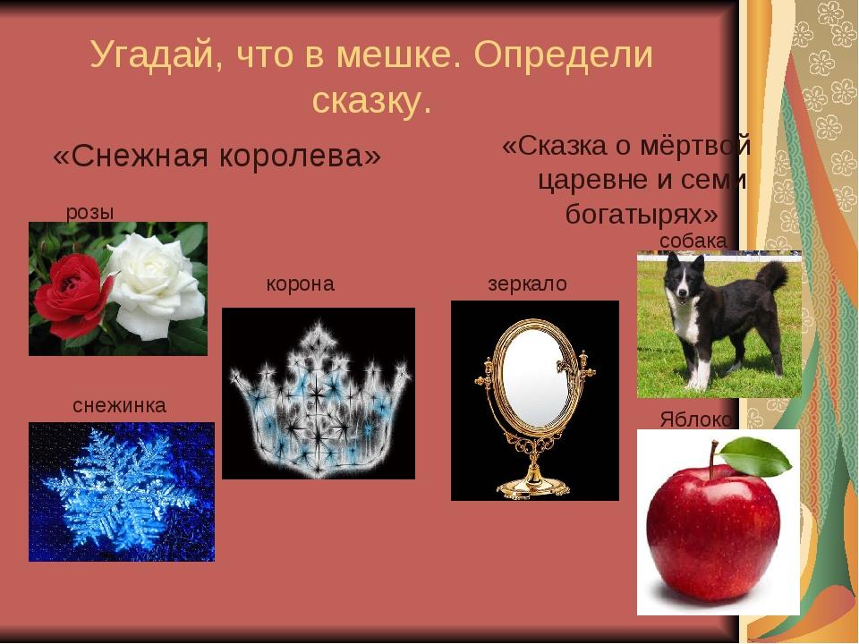 Угадай, что в мешке. Определи сказку. «Снежная королева» «Сказка о мёртвой ца...