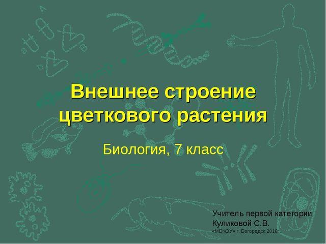 Внешнее строение цветкового растения Биология, 7 класс Учитель первой категор...
