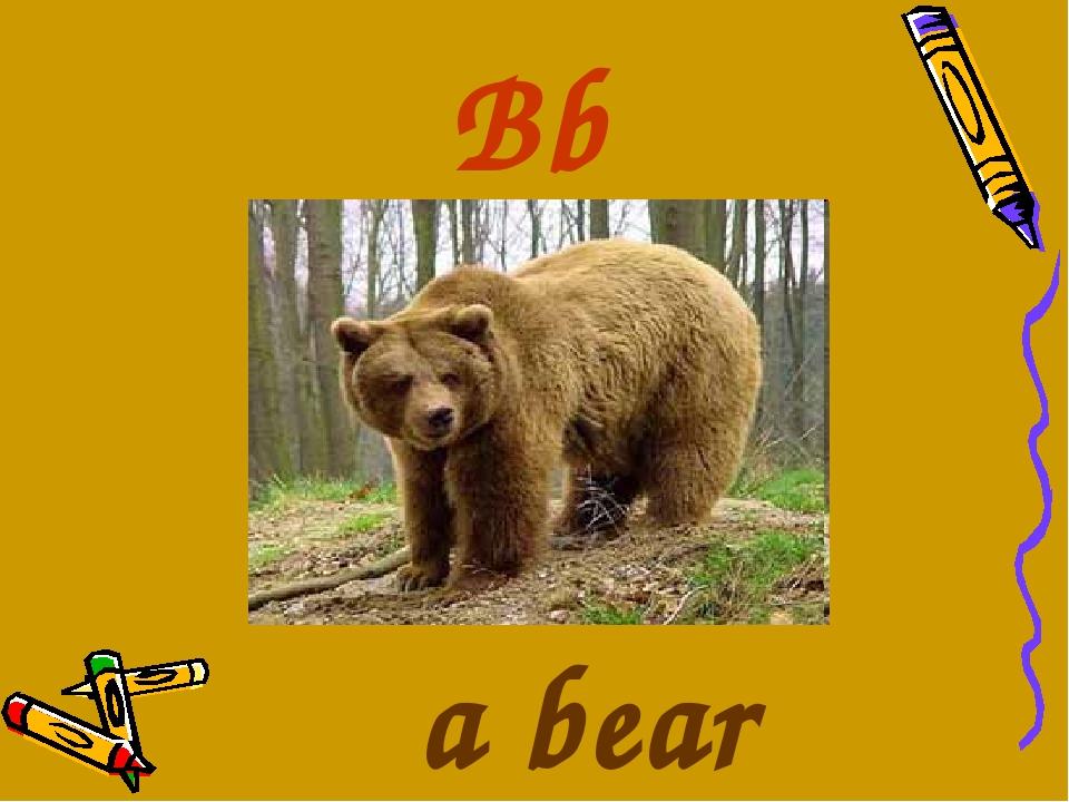 Bb a bear
