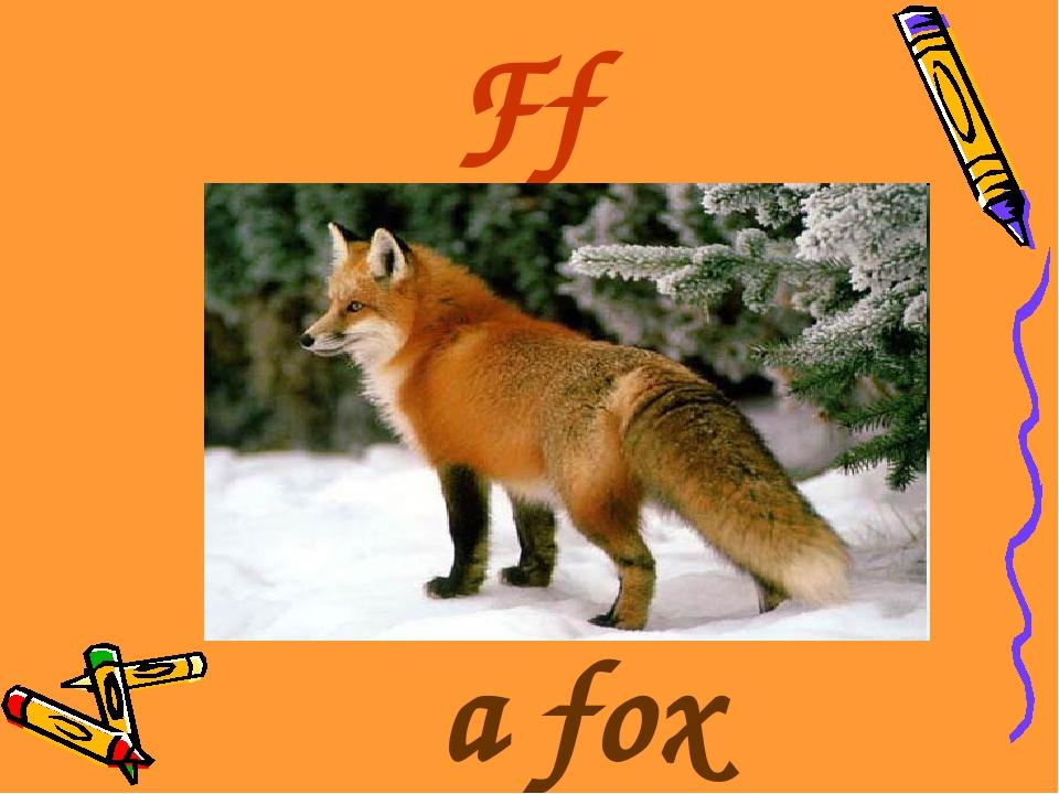 Ff a fox