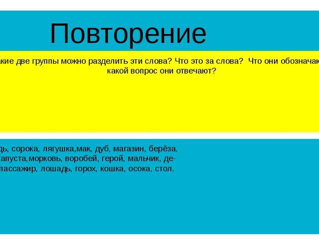 Повторение На какие две группы можно разделить эти слова? Что это за слова? Ч...