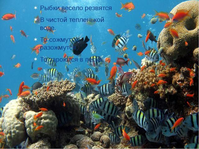 Рыбки весело резвятся В чистой тепленькой воде. То сожмутся, разожмутся, То з...