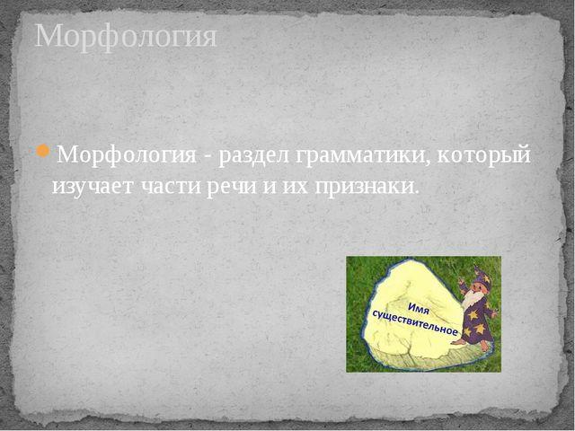 Морфология - раздел грамматики, который изучает части речи и их признаки. Мор...
