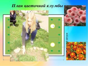 16 метров 8 метров План цветочной клумбы