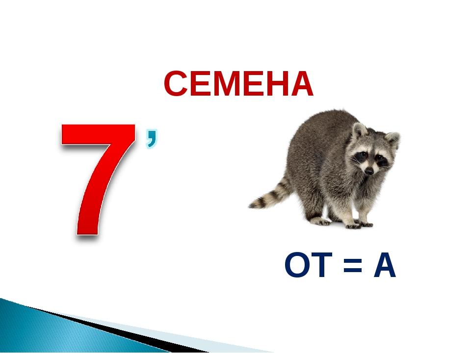 ОТ = А СЕМЕНА