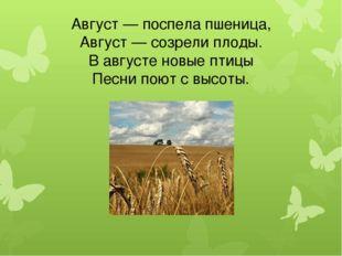 Август — поспела пшеница, Август — созрели плоды. В августе новые птицы Песни