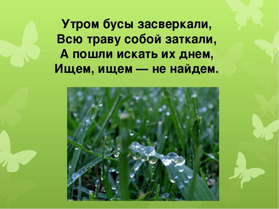 Утром бусы засверкали, Всю траву собой заткали, А пошли искать их днем, Ищем,...