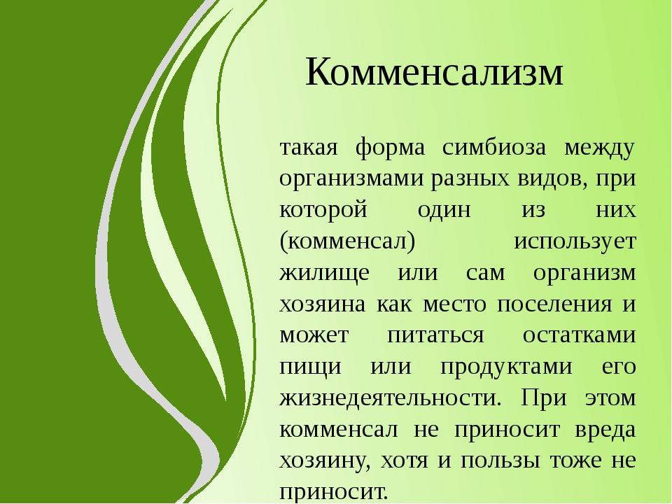 Комменсализм такая форма симбиоза между организмами разных видов, при которой...