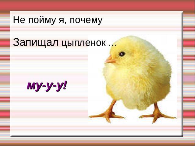 Не пойму я, почему Запищал цыпленок ... му-у-у!