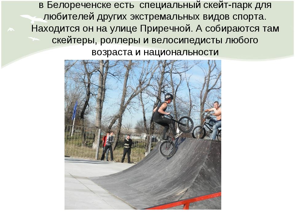в Белореченске есть специальный скейт-парк для любителей других экстремальных...