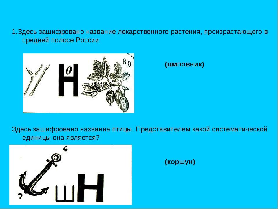 1.Здесь зашифровано название лекарственного растения, произрастающего в средн...