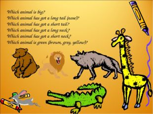 Which animal is big? Which animal has got a long tail (nose)? Which animal ha