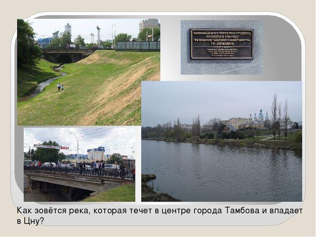 Как зовётся река, которая течет в центре города Тамбова и впадает в Цну?