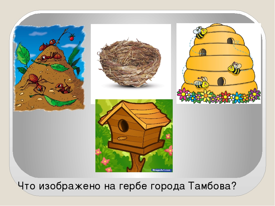 Что изображено на гербе города Тамбова?