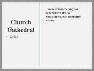Church Cathedral Церковь Собор
