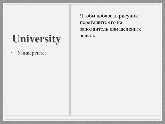 University Университет