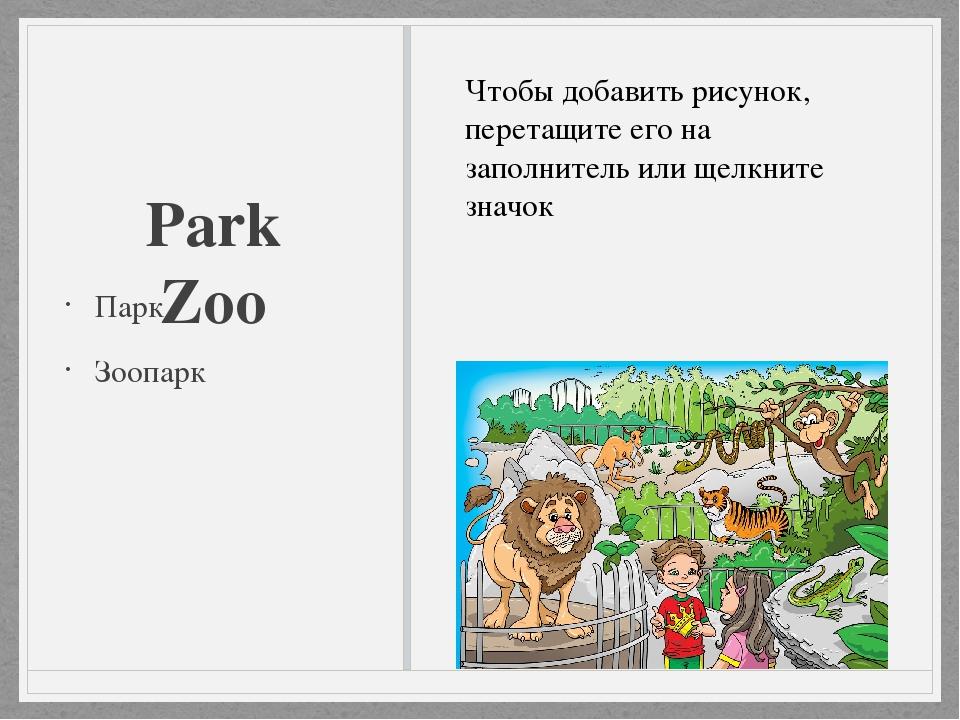 Park Zoo Парк Зоопарк