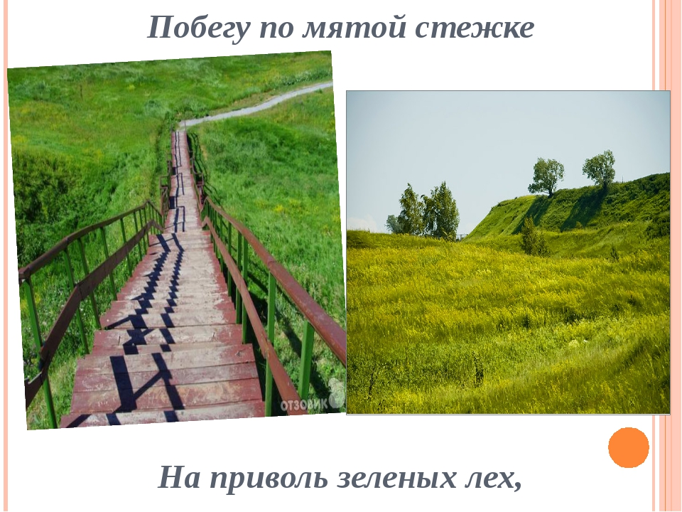 Побегу по мятой стежке На приволь зеленых лех,