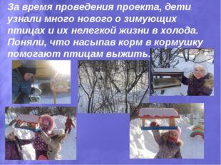 За время проведения проекта, дети узнали много нового о зимующих птицах и их