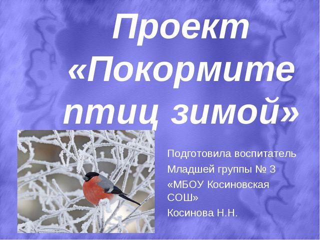 Проект «Покормите птиц зимой» Подготовила воспитатель Младшей группы № 3 «МБ...