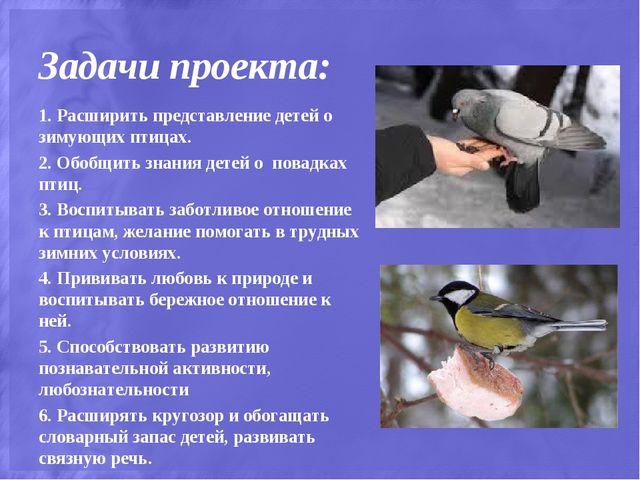 Задачи проекта: 1. Расширить представление детей о зимующих птицах. 2. Обобщи...