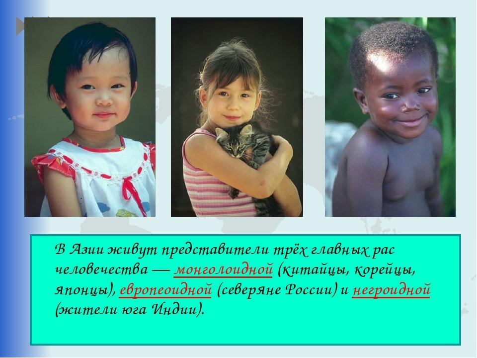 В Азии живут представители трёх главных рас человечества — монголоидной (кит...