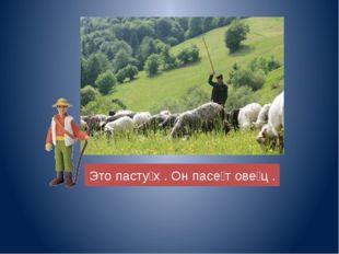 Это пасту̀х . Он пасѐт овѐц .