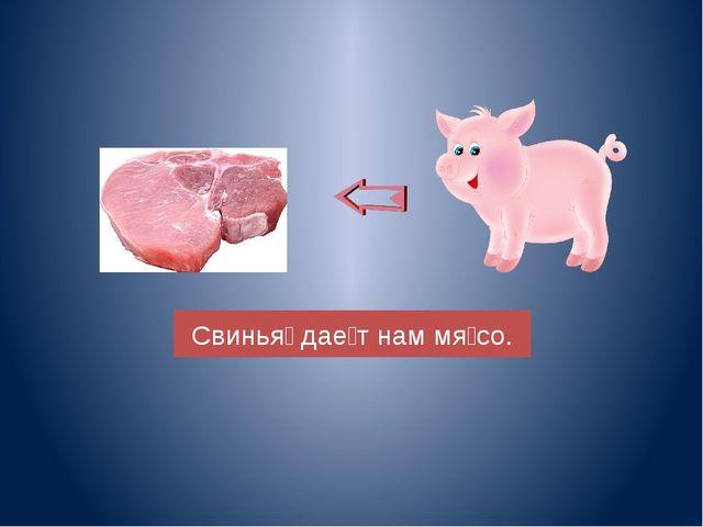 Свинья̀ даѐт нам мя̀со.