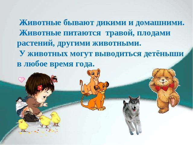Животные бывают дикими и домашними. Животные питаются травой, плодами растен...