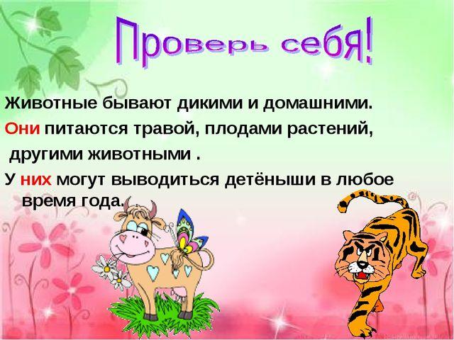 Животные бывают дикими и домашними. Они питаются травой, плодами растений, др...