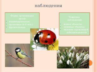 наблюдения Тематика наблюдений: живые объекты; неживые объекты; явления окруж