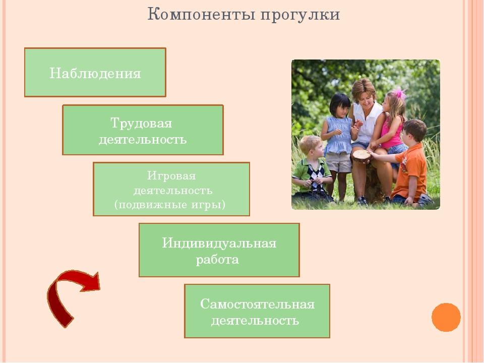 Компоненты прогулки Наблюдения Игровая деятельность (подвижные игры) Трудовая...