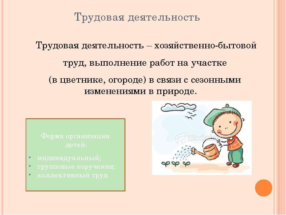Трудовая деятельность Трудовая деятельность – хозяйственно-бытовой труд, вып...