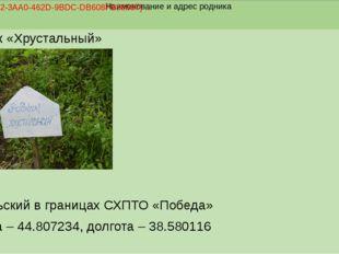 Родник «Хрустальный» пгт. Ильский в границах СХПТО «Победа» Широта – 44.8072