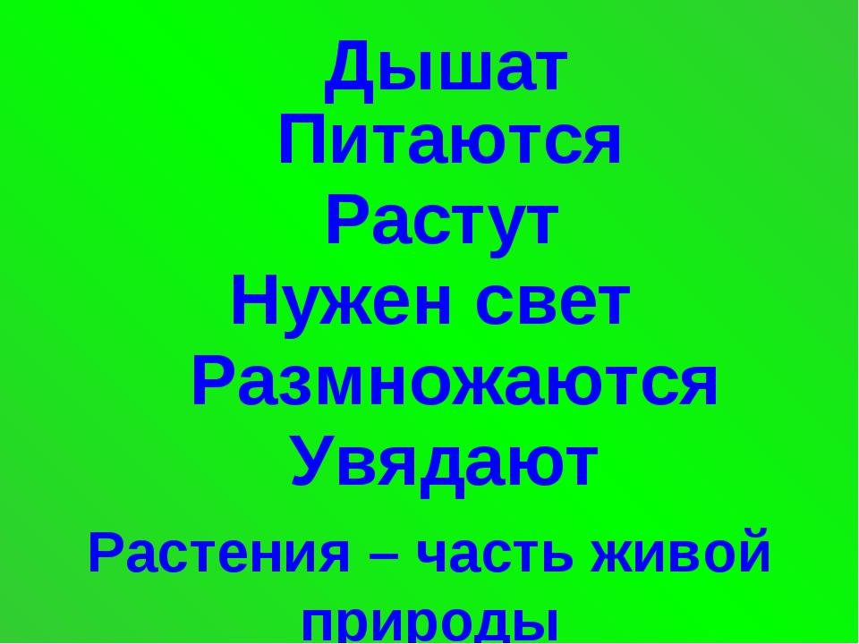 Дышат Питаются Растут Нужен свет Размножаются Увядают Растения – часть живой...